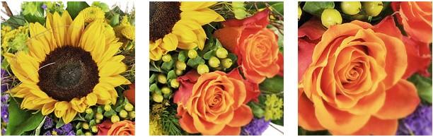 Blume2000 Firmengeschenke