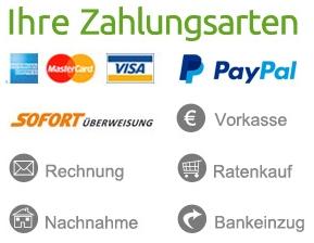 Die moderne Hausfrau Zahlungsarten